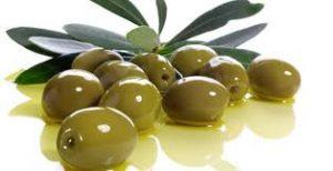 Las olivas ecológicas muy probablemente cuentan con mejores características que las tradicionales