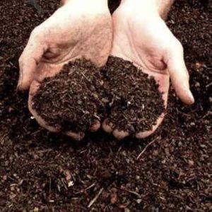 El orujo como compost
