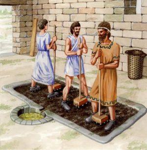 Los fenicios fueron quienes introdujeron el aceite de oliva en andalucía