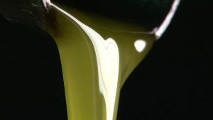 Existen organismos que regulan la venta de aceites ecológicos a fin de evitar la circulación de productos fraudulentos