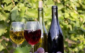 Los romanos, para la elaboracion de vinos, empleaban a los aceites como tutores
